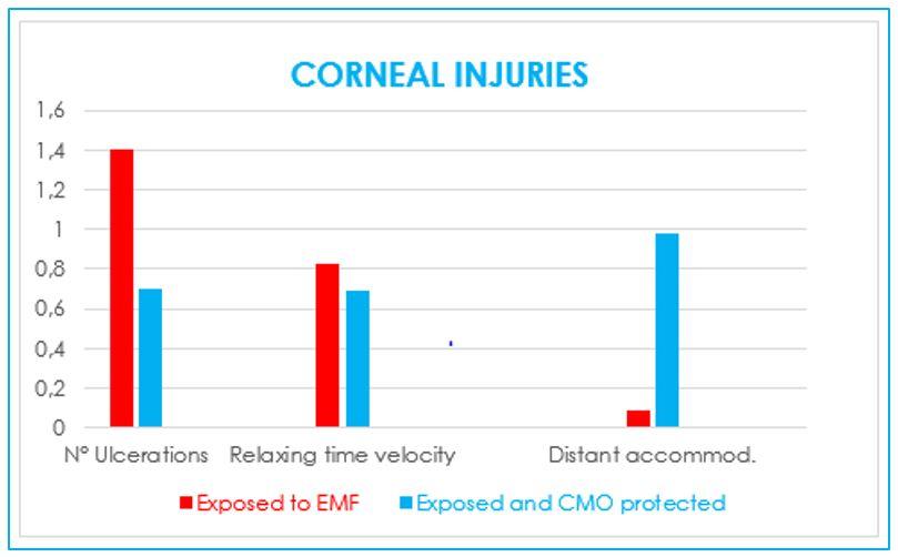 CORNEAL INJURY BY EMF
