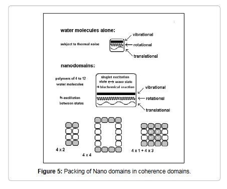 coherent domains